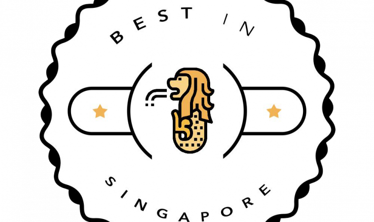 RobustTechHouse featured by Best Singapore