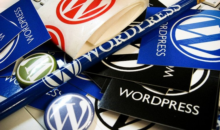 5 Tips for WordPress Developers