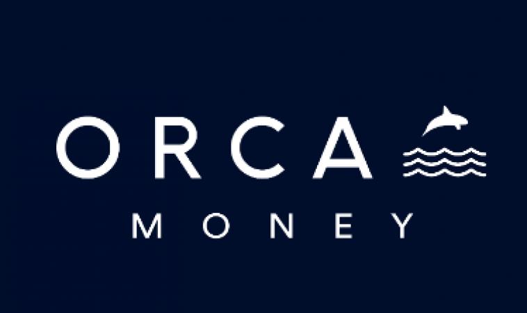 Orca's Summary of Peer-to-Peer (P2P) Lending