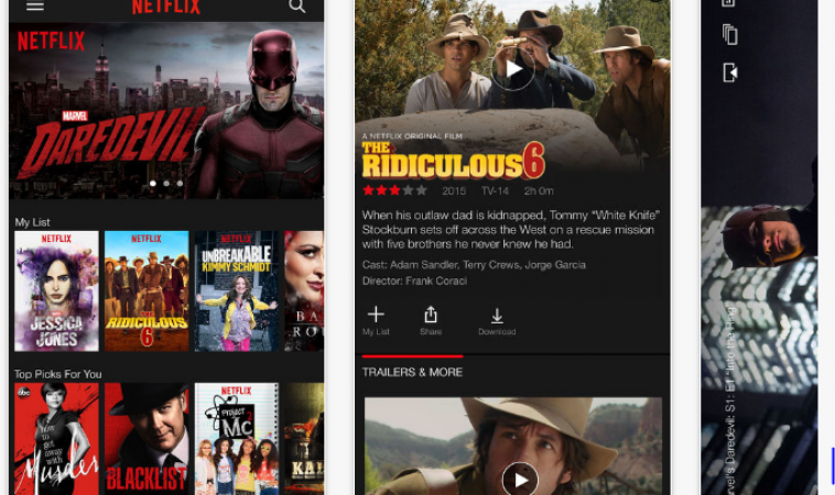 Review of the iOS Netflix App