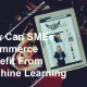 How Can SMEs Ecommerce Benefit From Machine Learning