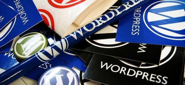 5 Tips for WordPress Developers
